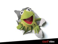¿Sabes cuál fue la primera aventura de la rana más famosa del mundo?#LosAñosPantanososDeKermit