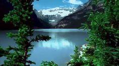 Wonderful Earth Nature film-Film merveilleux de la Terre Nature