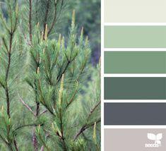 Color Nature | Design Seeds
