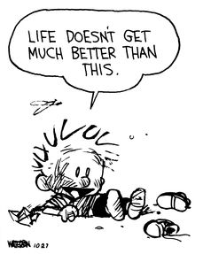 Calvin and Hobbes, Bag of Boogers (4 of 4 DA) - Life doesn't get much better than this...