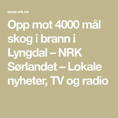 Opp mot 4000 mål skog i brann i Lyngdal – NRK Sørlandet – Lokale nyheter, TV og radio Math Equations, Tv, Television Set