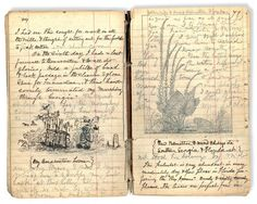 A page from Naturalist John Muir's notebook during his travels in Alaska in (Image from the book Beyond Words: 200 years of illustrated diaries, Heyday Press). And the link is to an article on Artist's Journals, by online art magazine In The Make. Artist Journal, Artist Sketchbook, Journal Pages, Commonplace Book, Nature Journal, Handmade Books, Smash Book, Altered Books, Antique Books