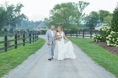 A stroll down the road at Alturia Farm. Shelby Dickinson Photography