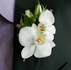 orchid boutonniere, wedding accessories, orchid flowers, groom boutonniere by MostBeautifulPeople on Etsy