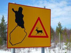 Beware of the Reindeer