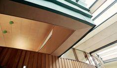 Maggies Centre, Inverness - Carpenter Oak & Woodland