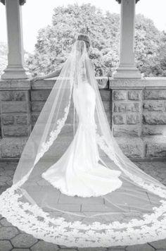 Love the veil