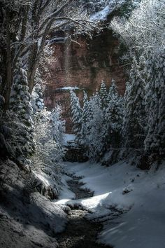A pretty winter scene with snow in the trees Winter Magic, Winter Snow, Winter Time, Cozy Winter, Wallpaper Winter, Winter Scenery, Snow Scenes, Winter Beauty, Winter Pictures