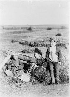 Дети в поле.