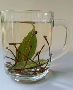 Slimming with Laurel Cherry Stalk Tea - Prof. Find a different İbrahim Uslu Slimming with Laurel Cherry Stalk Tea – Prof. Detox Recipes, Raw Food Recipes, Home Remedies, Natural Remedies, No Gluten Diet, Health And Wellness, Health Fitness, Making Yogurt, Pear Smoothie