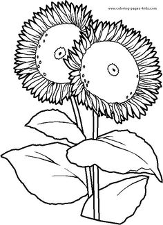 flower page printable coloring sheets flowers coloring pages color plate