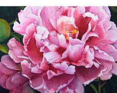 Local Artist Interviews: May Kathy Miller Peony Painting, Acrylic Painting Flowers, Watercolor Flowers, Watercolor Paintings, Watercolor Cards, Watercolour, Flowers Nature, Botanical Art, Flower Art