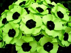 Poppy Love Paper Flowers Lime Green set by DragonflyExpression