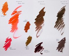 The Laurel Tree: ink