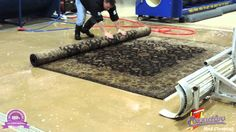 #RugCleaningProcessLuther #RugCleaningServicesLuther #RugCleaningCompanyLuther #BestRugCleaningLuther #CleaningRugsLuther #RugCleanerLuther