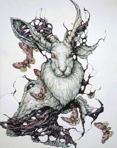 This series by artist Lauren Marx can be somewhat disturbing and grotesque. Her illustrations feature animals in a state of atrophy and. Arte Sketchbook, Ouvrages D'art, Desenho Tattoo, Tatoo Art, Art Et Illustration, Animal Illustrations, Art Graphique, Pics Art, Dark Art