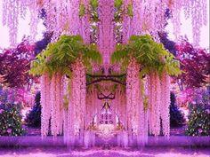 árvore bonita das glicínias Vetor