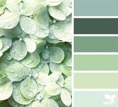 Color Due. Design Seeds Green Color Pallete, Sea Green Color, Nature Color Palette, Pantone, Bar Deco, Green Theme, Color Balance, Design Seeds, Color Stories