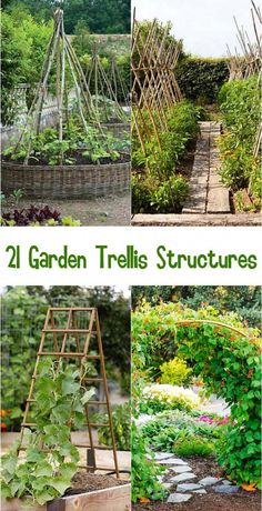 21 Easy DIY Garden Trellis Ideas & Vertical Growing Structures - Create enchanting garden spaces with 21 beautiful and DIY friendly trellis and garden structures, such as tunnels, teepees, pergolas, screens and more! – A Piece Of Rainbow - Veg Garden, Vegetable Garden Design, Vertical Vegetable Gardens, Potager Garden, Vegetable Gardening, Diy Vertical Garden, Allotment Gardening, Kitchen Gardening, Garden Arbor