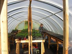 DIY Hoop Greenhouse - Table space for flats of plants Greenhouse Tables, Simple Greenhouse, Homemade Greenhouse, Outdoor Greenhouse, Cheap Greenhouse, Portable Greenhouse, Backyard Greenhouse, Greenhouse Plans, Pallet Greenhouse