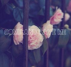 Flowers, fence, come and save me
