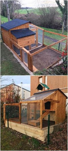 This pallet chicken coop project is wonderfully designed out for your house outdoor area. If you have been on some plans to start off with your unique coop ideas, then thinking about adding the wood pallet amazing chicken coop effect in it is the brilliant concept.