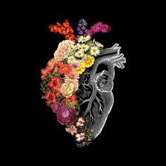 'Flower Heart Spring' Poster by tobiasfonseca - kunst illustration Arte Com Grey's Anatomy, Anatomy Art, Anatomy Drawing, Human Anatomy, Plant Drawing, Anatomical Heart, Spring Art, Summer Art, Heart Art