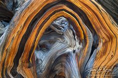 sierra abstract print - Google Search