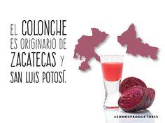 El Colonche es originario de Zacatecas y San Luis Potosí. SAGARPA SAGARPAMX #SomosProductores
