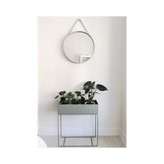 ferm LIVING Plant Box: https://www.fermliving.com/webshop/shop/green-living.aspx