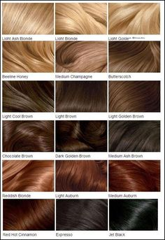 Clairol's Hair Color Chart