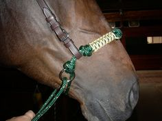 Indian Rope Hackamore Bridle