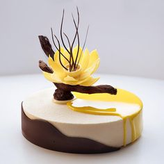 Chocolate flower and my favorite taste: mango mousse, exotic fruit confit, banana biscuit, caramel layer, crispy base. Fancy Desserts, Gourmet Desserts, Fancy Cakes, Plated Desserts, Delicious Desserts, Dessert Recipes, Decoration Patisserie, Chocolate Flowers, Pastry Art