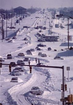 1982 Blizzard in Denver Colorado. I was living there during the blizzard of 82 & 83 and my boss still expected us to come to work! Nebraska, Oklahoma, Kansas, Colorado Homes, Denver Colorado, Colorado Springs, Denver Tv, Longmont Colorado, Wonderful Places