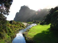 Resultados de la Búsqueda de imágenes de Google de http://photos.stevensullivan.net/Vacation/New-Zealand-North-Island-8212/IMG2884/183336361_E3Nt8-M-1.jpg