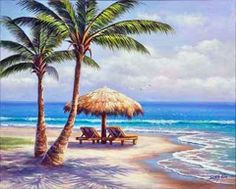 sung kim, Beach and palm trees