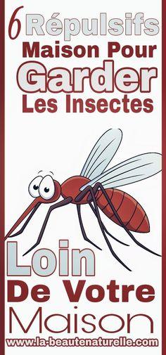 6 répulsifs maison pour garder les insectes loin de votre maison #répulsifs #maison