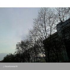 """""""#Torino raccontata dai cittadini per #inTO  Foto di @heartonearth  Sunrise Corso Massimo d'Azeglio"""""""