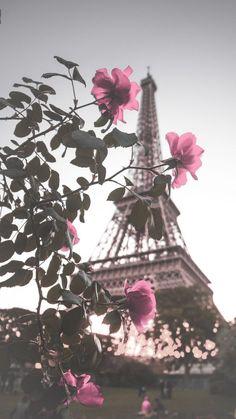 Paris Wallpaper, Rose Wallpaper, Cute Wallpaper Backgrounds, Nature Wallpaper, Cute Wallpapers, Vintage Flower Backgrounds, Torre Eiffel Paris, Paris Eiffel Tower, Tour Eiffel