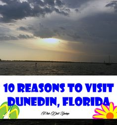 Dunedin, Florida is a short hop from the busyness of Clearwater Beach. One of my favorite spots in Florida is Dunedin. It is a really small town that is BIG in the arts and community. Florida Theme Parks, Places In Florida, Disney World Florida, Visit Florida, Florida Living, Florida Beaches, Sandy Beaches, Disneyland Vacation, Florida Vacation