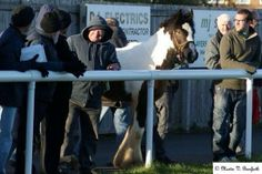 A non-league match on Good Friday was greeted by the most unlikely of spectators - a HORSE.  Ashington AFC, who play in the Northern League division one, were taking on Crook Town at Portland Park in Northumberland in the UK when the surprise spectator turned up.