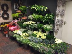 Onze snijbloemen hoek