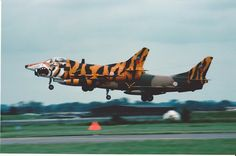 Pair of Portugese Air Force FIAT G-91 trainers/light attack a/c. Both in International Tiger Meet schemes, though obviously nearest made more effort. 5452 and 1810 from 301SQN, arriving for the RIAT at Fairford 1991