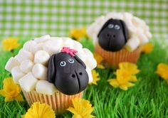 Sheep cupcakes made with mini marshmallows (In Dutch but you get the gist) Sheep Cupcakes, Animal Cupcakes, Yummy Cupcakes, Cupcake Fondant, Cupcake Art, Cupcake Cookies, Cupcake Ideas, Cupcake Tutorial, Shaun The Sheep