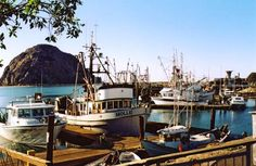 Morro Bay, CA. A modern day Fishing Village.   one of my favorite places