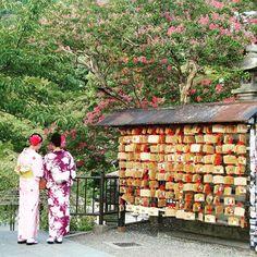 마치 한 폭의 그림처럼 서있었던 유카타를 입은 소녀들*~* 정말 아름다워서, 곁에 있던 외국인 관광객들도 나와 함께 모두 카메라셔터를 눌렀다...! #Kyoto #Kiyomizudera #yukata #picturesque_scenery #unforgettable #pupuru #wifirental