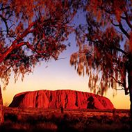 The Shamanic Times   Australian Aboriginal Indigenous 2012 Prophecy   The End of the 40,000 Year Dreamtime