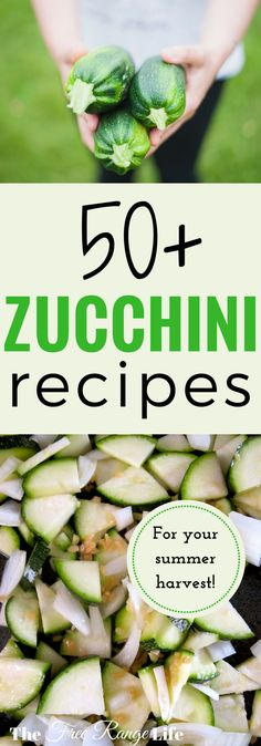 Too much zucchini in your garden and on your counter? These 50 zucchini recipes are sure to please!