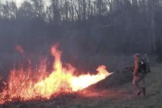 Testing the X15 flamethrower on an early-spring prescribed burn