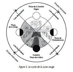 les cycles menstruels féminins et lunaires sont étroitement liés, le corps de la femme reflétant les phases de la lune  #moon #women #life